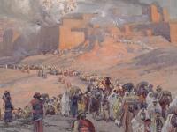 Прямой эфир ТБН из Иерусалима посвятят празднику Суккот